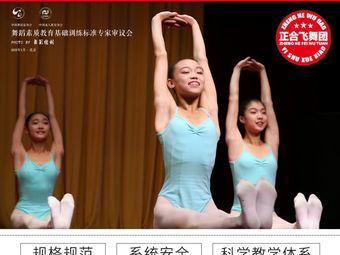 中国南舞·正合舞蹈学校旗舰店