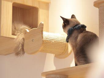 躲猫猫咖啡屋