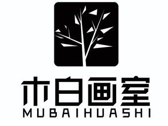 木白画室 中央美术学院师资