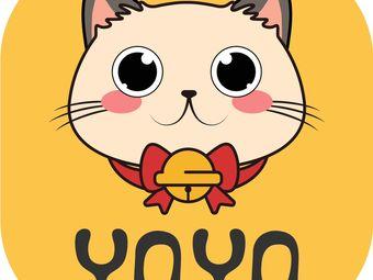 YOYO萌宠之家·猫舍猫咪售卖
