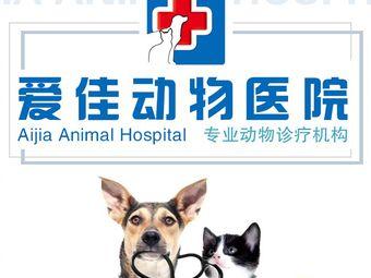 淄博爱佳动物医院