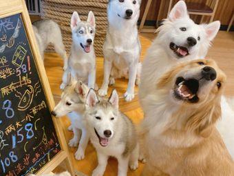 凯特与道格Pet Cafe狗咖·猫咖