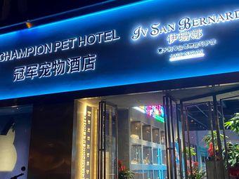 Champion Pet宠物酒店•猫咖