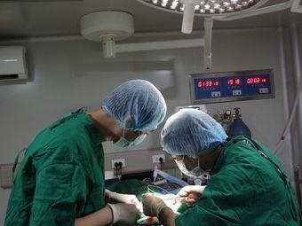 舔舔动物医院24小时宠物医院