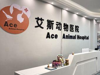 艾斯动物医院