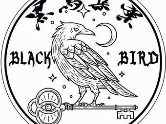 黑鸟集案剧本推理社
