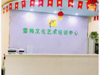 乌鲁木齐瑞雪欣梅教育培训有限公司(八道湾校区)