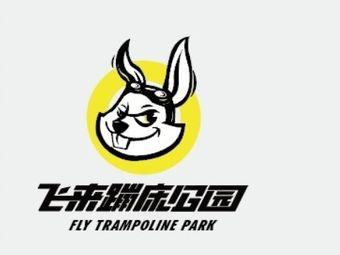 Fly蹦床公园(神华万利城店)