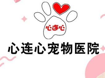心连心宠物医院(上锦颐园店)
