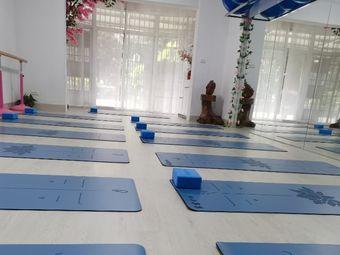 露露养生瑜伽塑形馆