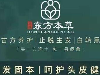 华豫东方本草头部健康管理中心