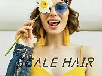 SCALE  HAIR尺度