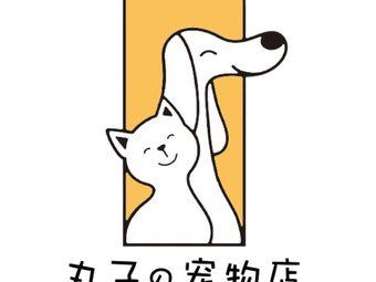 丸子の宠物店