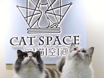 名猫空间CATSPACE