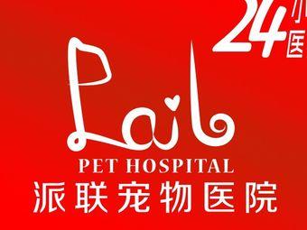 派联宠物医院 ·猫科·异宠