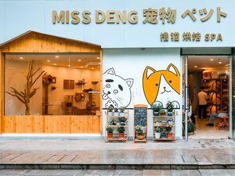 MISS DENG 宠物·猫公馆猫舍•撸猫