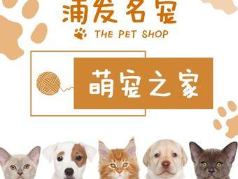 浦发名宠•猫狗专卖