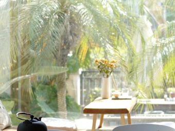 李树枝茶室