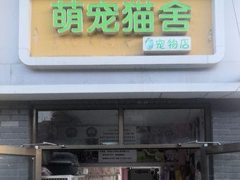 萌宠猫舍猫咖宠物店
