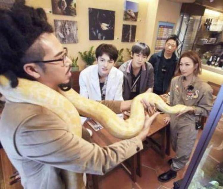 郑秀文把大蟒蛇缠在脖子上,网友被吓坏了她却笑得很开心  第2张