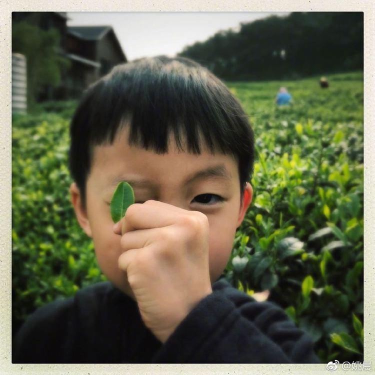 姚晨微博晒6岁儿子画作,实力表演亲妈打脸  第5张