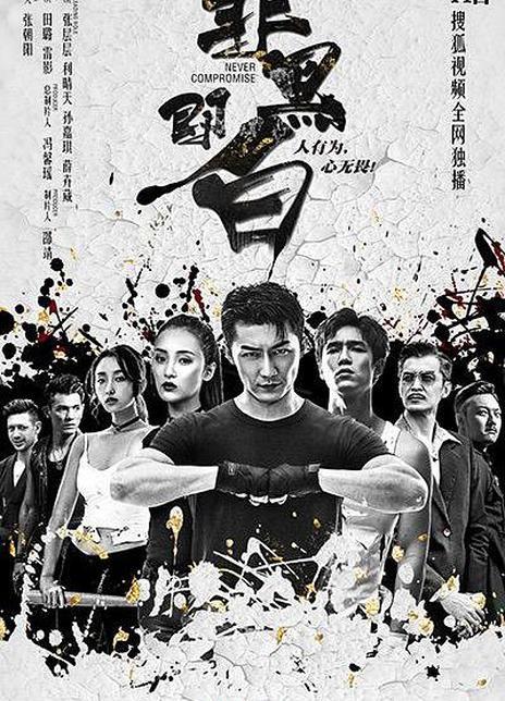 2020年 國產高分網劇《非黑即白》全12集
