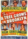 布鲁克林有棵树