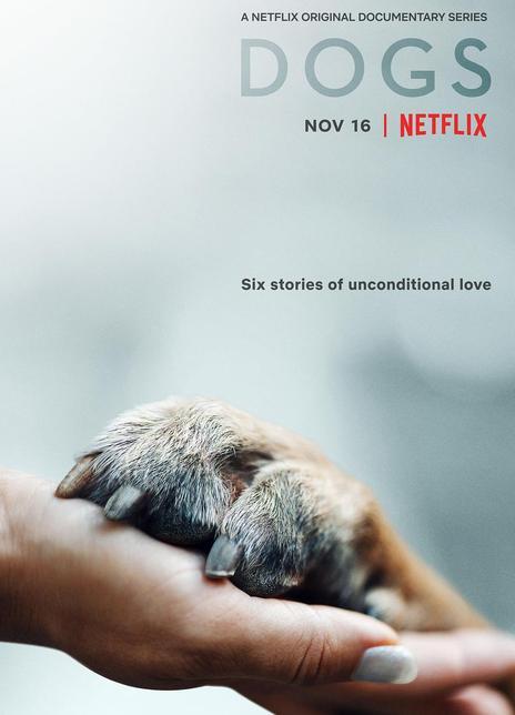 2021美国纪录片《爱犬情深第二季》全4集.HD1080P.中字