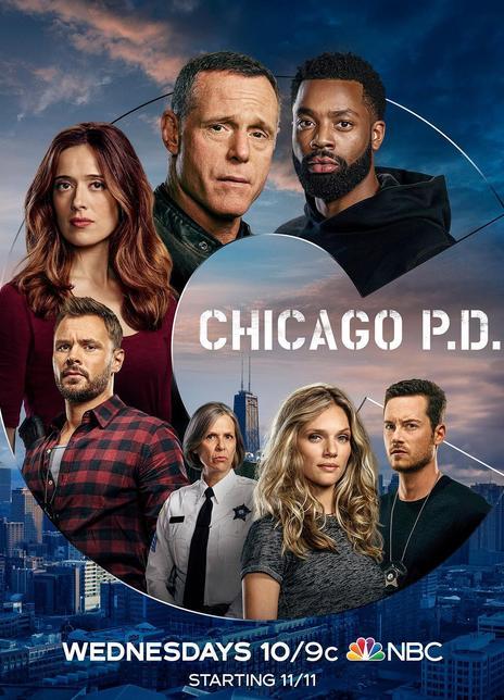 芝加哥警署第八季全集 2020.HD720P 高清下载
