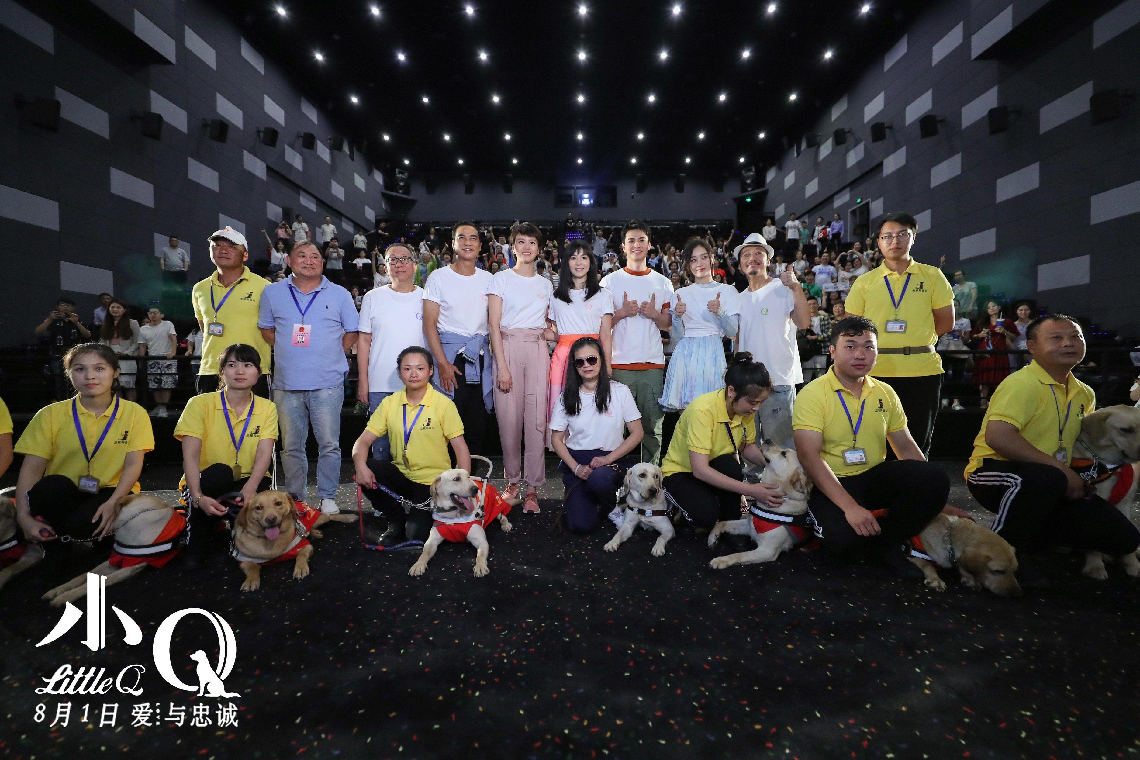 电影《小Q》上海超前观影,催泪神犬忠诚一生感