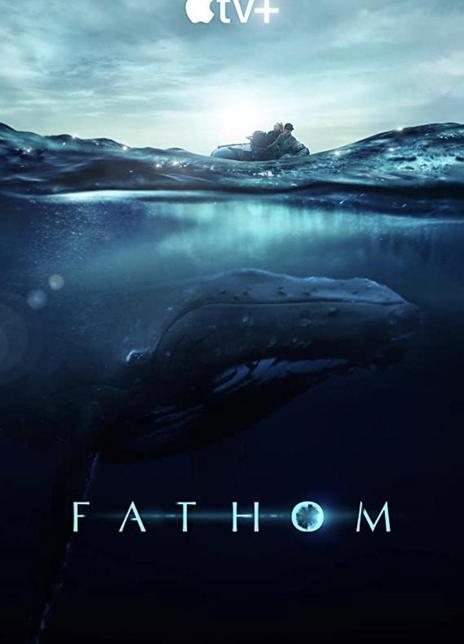 2021美国纪录片《探寻鲸之音》HD1080P.中英双字