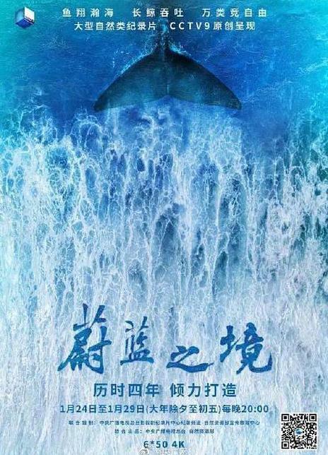 2020国产环保纪录片《蔚蓝之境》全集 BD720P 高清下载