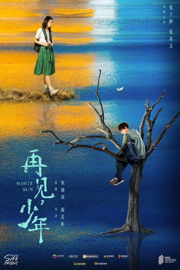 《再见,少年》曝先导海报,张子枫寻觅式成长领悟青春  第1张