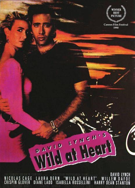1990美国动作《我心狂野》 HD720P 高清下载