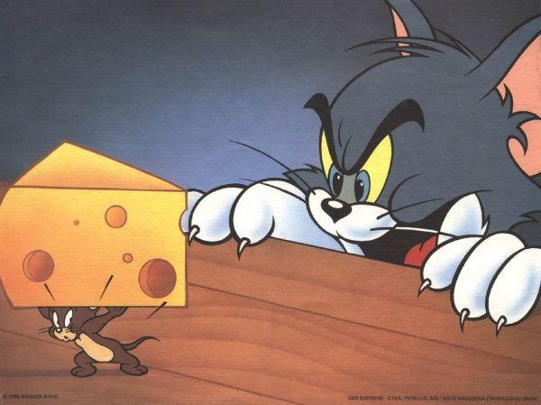 猫和老鼠真人版大反派曝光,权力的游戏小恶魔有望出演  第2张