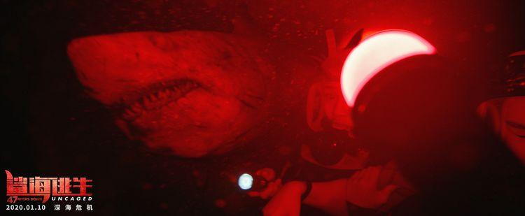 《鲨海逃生》曝终极预告预售开启!盲鲨嗜血逐猎开年震撼观感
