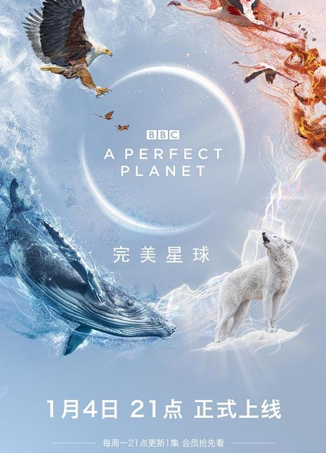 2021BBC纪录《完美星球》WEB1080P 国语中字