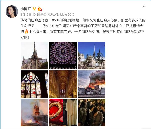 刘晓庆发文感慨巴黎圣母院失火,她的这句话引发了网友的思考  第11张