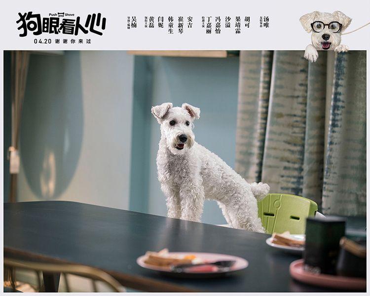 《狗眼看人心》曝主题曲MV,好妹妹献唱《宅男配狗 天长地久》  第3张