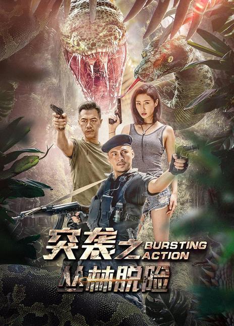 2020年國產動作片《突襲之叢林脫險》4K.國語中字