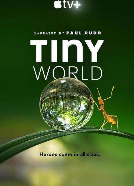 2020纪录片《小小世界》4K.HD中英双字