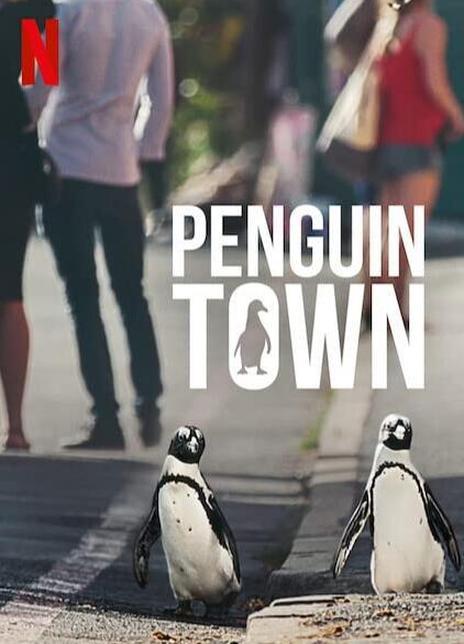 2021南非纪录片《企鹅小镇全集》 HD1080P 高清下载