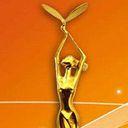 中国电视金鹰奖