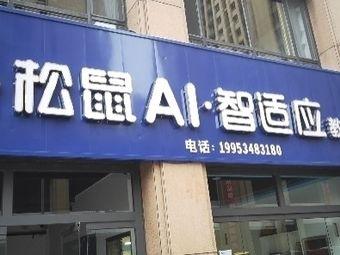 松鼠AI智适应教育
