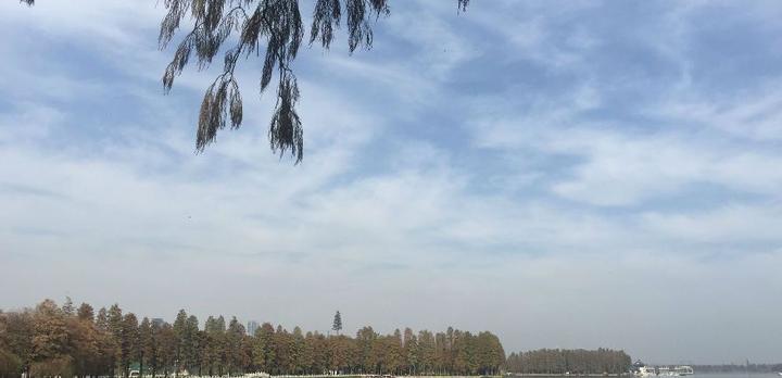 【百湖之市】武汉湖泊今犹在?(未完待续...)