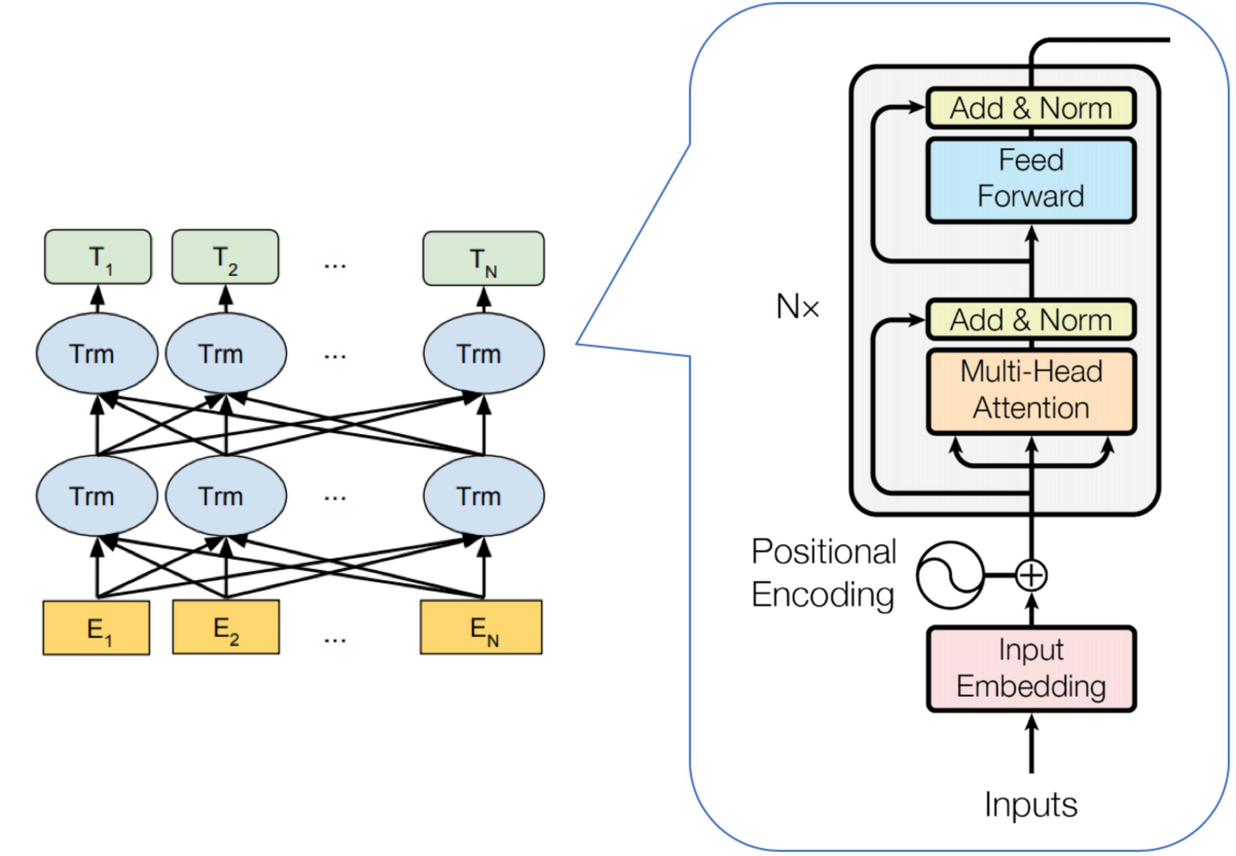 图2 BERT及Transformer网络结构示意图