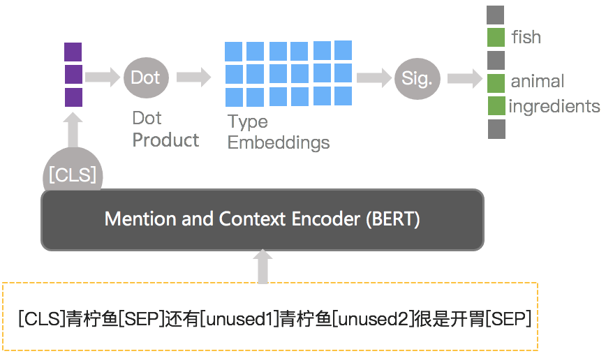 图10 BERT Taxonomy关系模型
