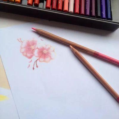 樱花纹身图