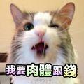 泡芙寿喜锅下午茶