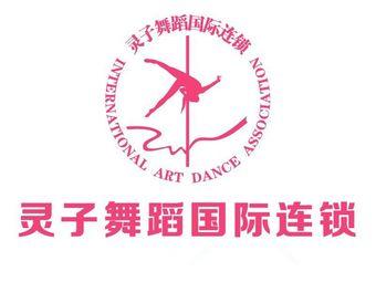 水灵子舞蹈国际连锁(霞山分校)